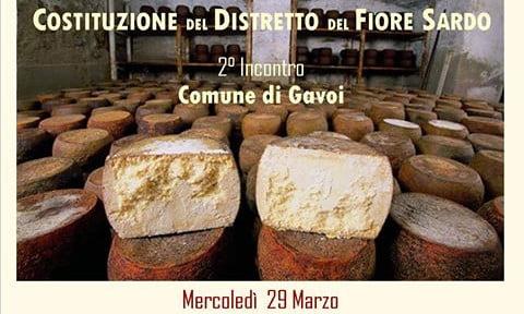 DISTRETTO-FIORE-SARDO-GAVOI-3