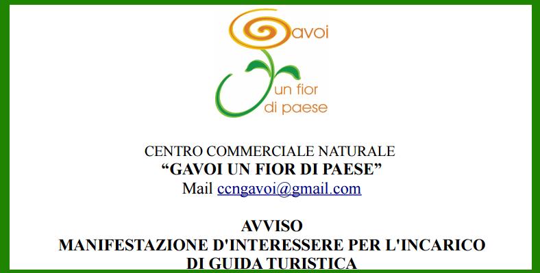 GAVOI-UN-FIOR-DI-PAESE