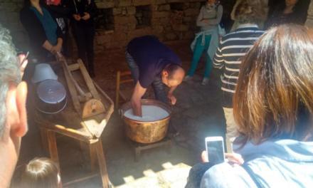 """Fiore Sardo – I produttori artigianali sostengono le proposte dei Pastori Sardi sulla """"Vertenza Latte"""""""