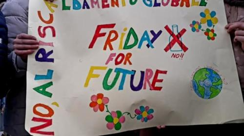 friday for future gavoi