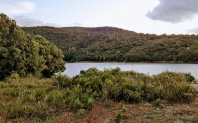 CORSO DI PESCA PER BAMBINI – ORGANIZZATO DALLA ASSOCIAZIONE TURISTICA PRO LOCO GAVOI –